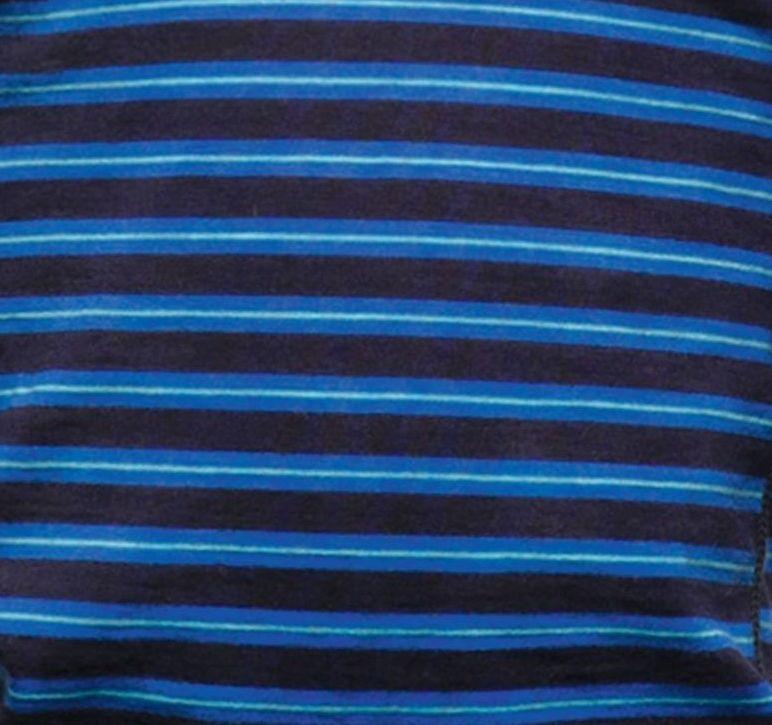 Dryžuota mėlyna 511